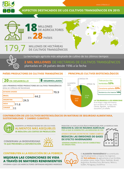 infografia OMGs 2015
